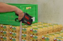 Die Eier werden bei uns geprüft und für den Handel verpackt.